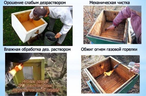 Дезинфекция пчелиных ульев