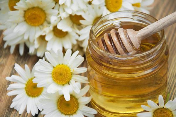 Ромашка и мёд