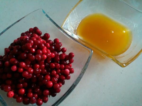 Брусника и мед в тарелке