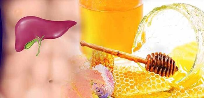Мед для здоровья печенки