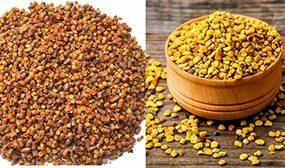 Перга и пыльца - в чем разница?