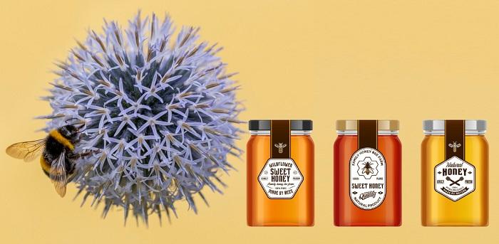 Мед из цветка мордовника