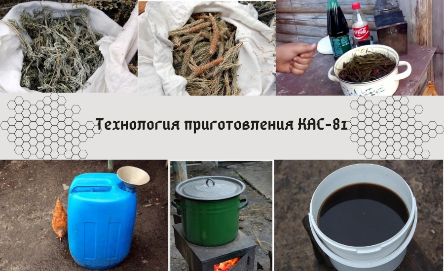 Рецепт КАС-81