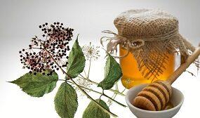 Мед из аралии