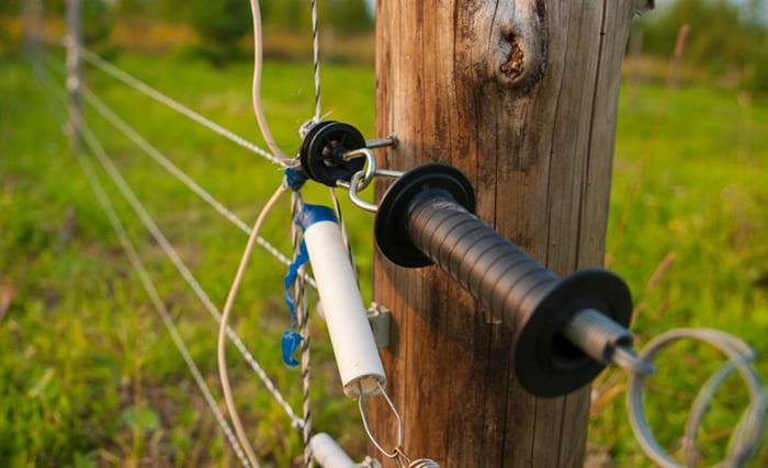 Электрический ток в изгороди